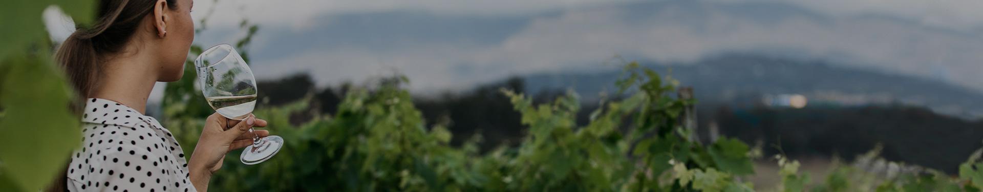 australian wine reagion banner - girl drinking wine in the vineyard